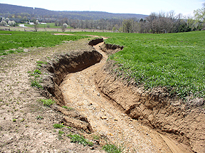 Erosion Control