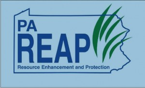 New guidelines for REAP applications