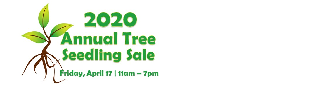 2020 ANNUAL SEEDLING SALE