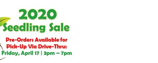 2020 Seedling Sale Updates