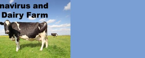What You Need To Know About Coronavirus (COVID-19) On Your Dairy