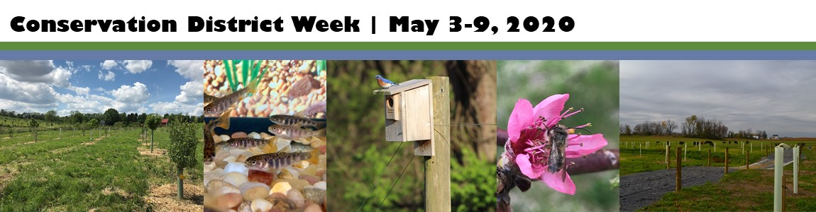 Celebrating Conservation District Week!